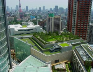 Granit Green-Roof-Image